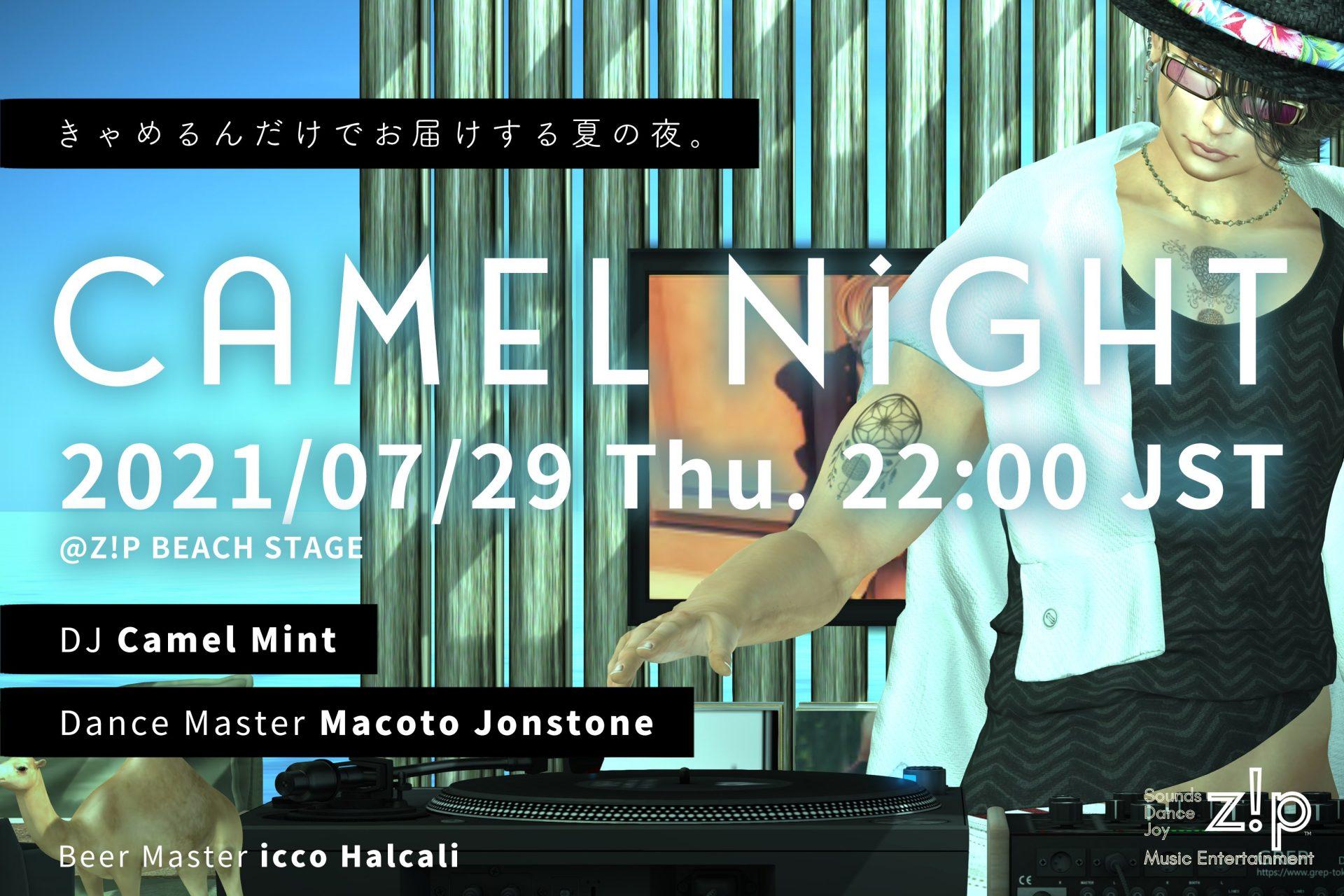 Camel Night Main